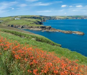 North Cornwall Coast route Port Isaac area regarding British's longest hiking and trekking path