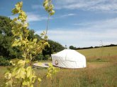 Campsites near ST Ives Cornwall