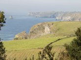 Cottages to rent in Port Isaac