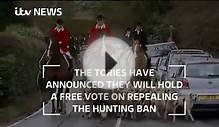 Should the ban on hunting with dogs stay in place?
